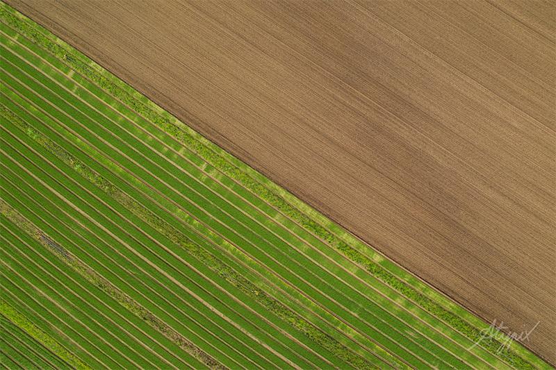photographie aérienne champs normandie