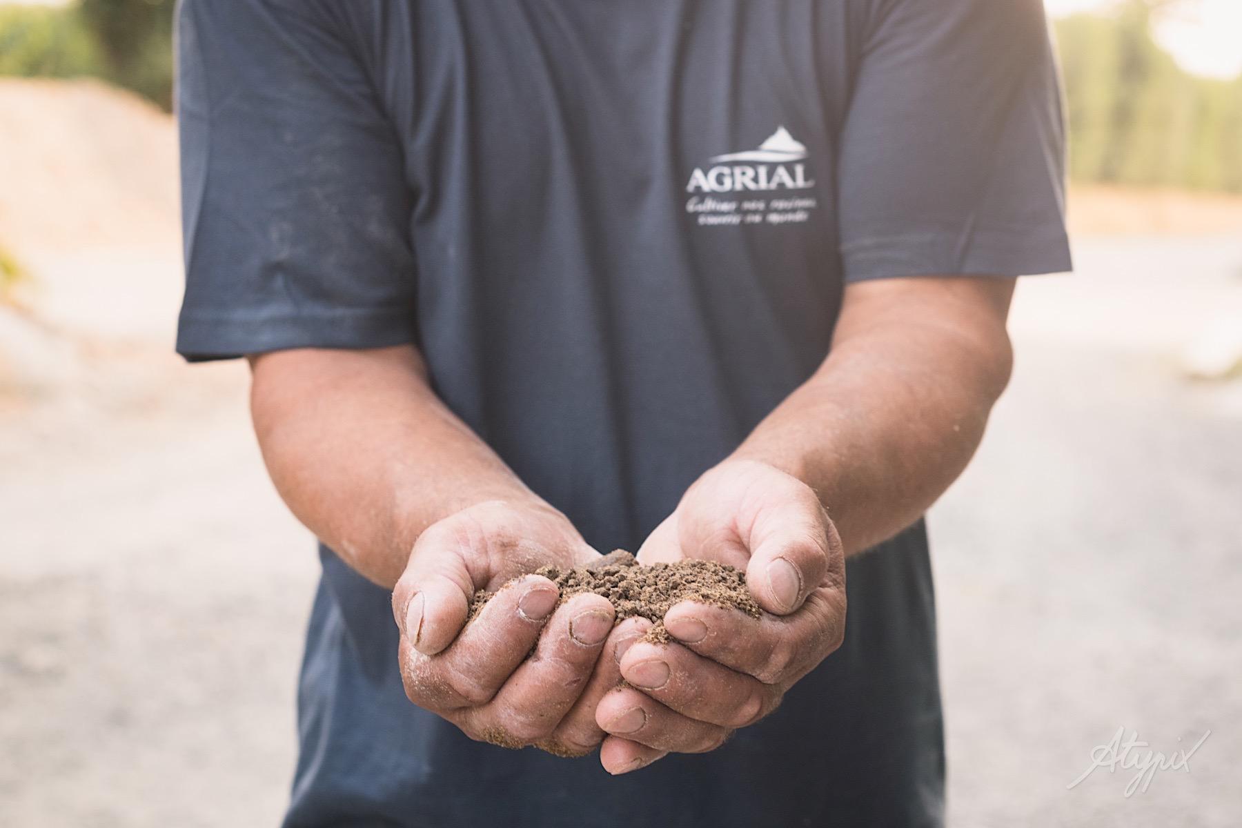 mains d'agriculteur