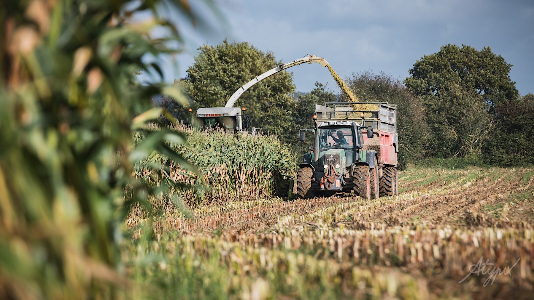 recolte agricole manche reportage