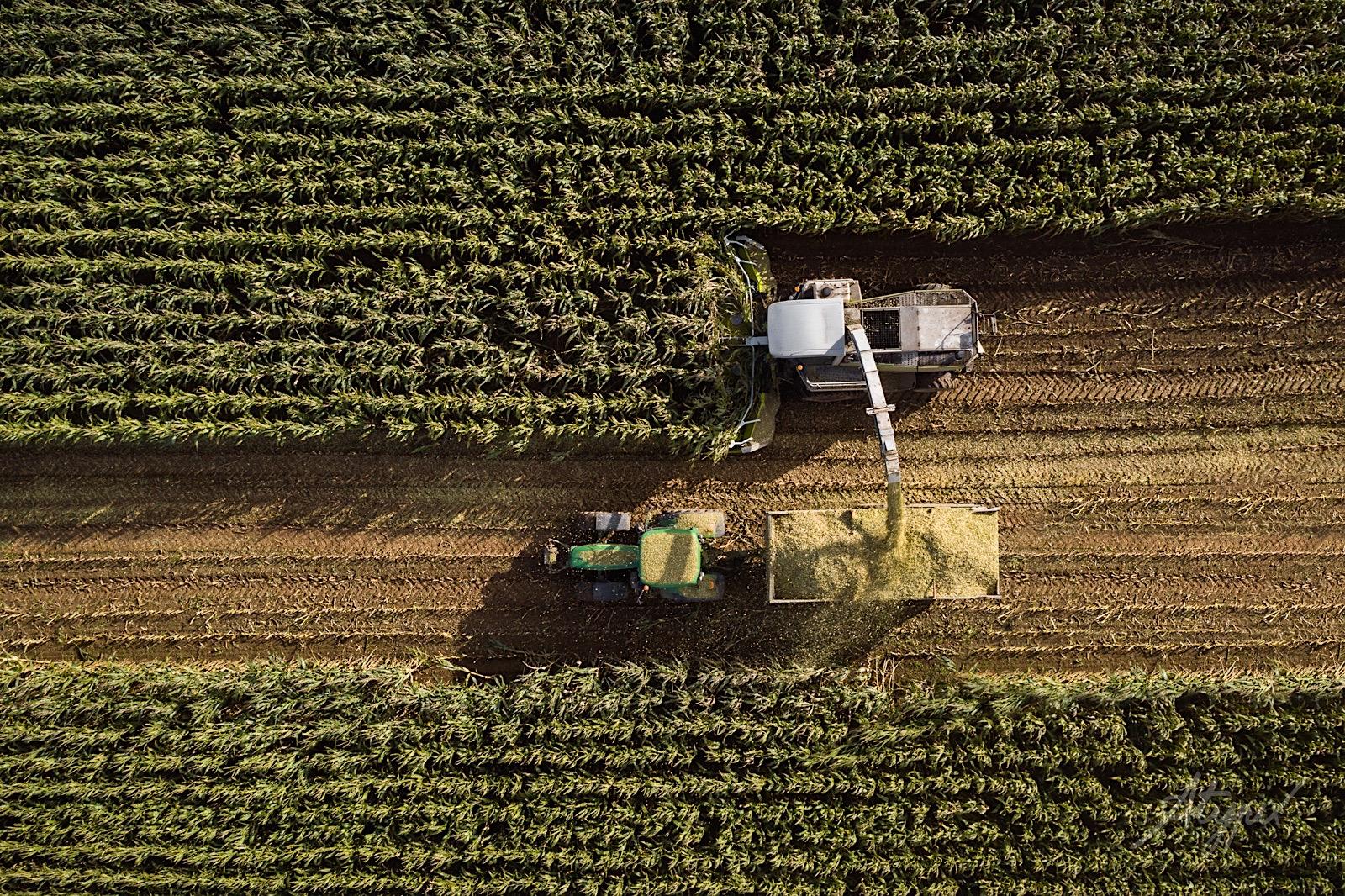vue aérienne drone champ agriculture