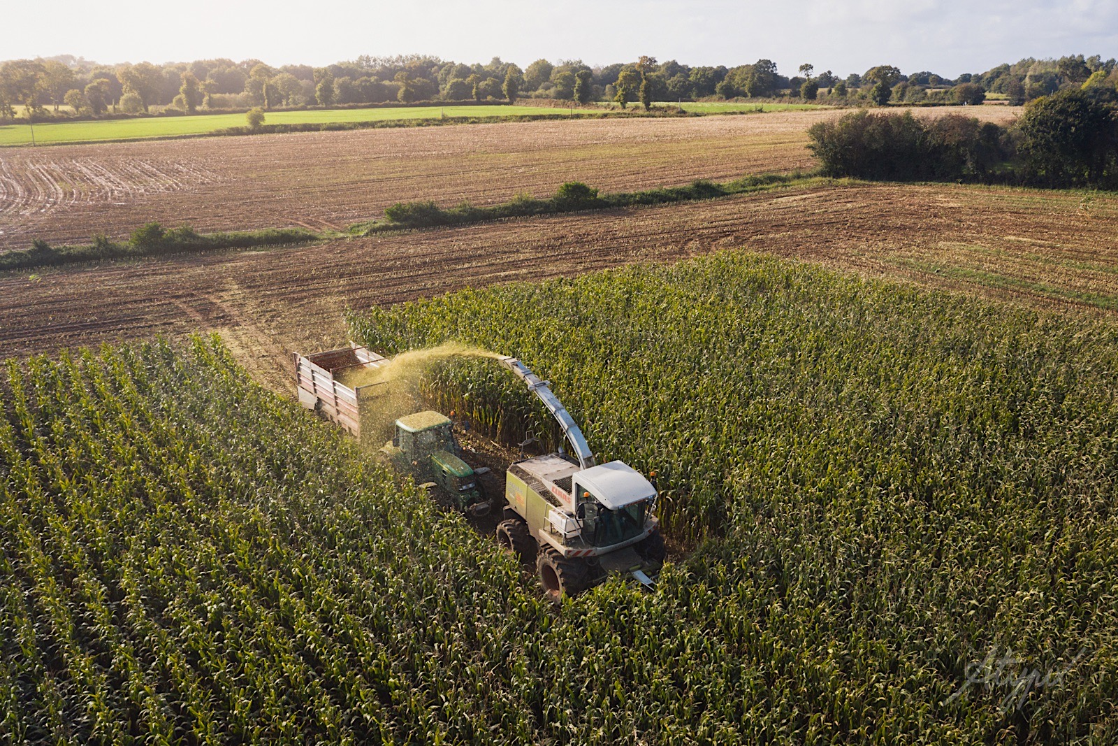 photographe drone agriculture moissonneuse bateuse